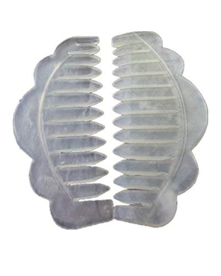 傘驚き技術者Jade Stone Head Therapy Massage Hair Comb Scalp Massager Pack of 2 [並行輸入品]