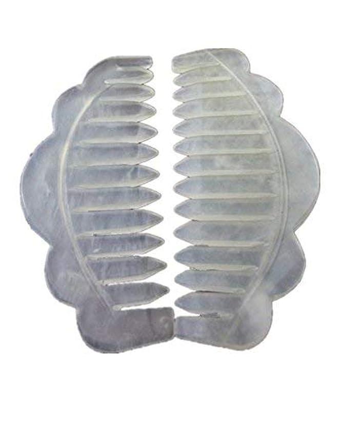 仕事こだわり粘り強いJade Stone Head Therapy Massage Hair Comb Scalp Massager Pack of 2 [並行輸入品]