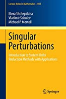 Singular Perturbations: Introduction to System Order Reduction Methods with Applications (Lecture Notes in Mathematics)