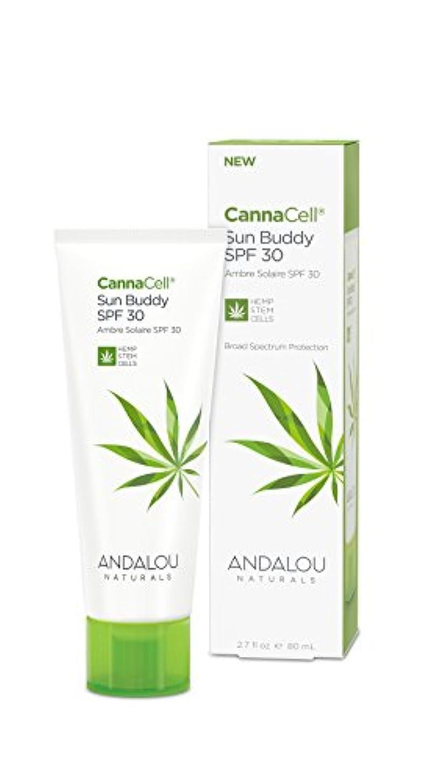 オーガニック ボタニカル クリーム 日焼け止め UVカット ナチュラル フルーツ幹細胞 ヘンプ幹細胞 「 CannaCell® サンバディー SPF30 」 ANDALOU naturals アンダルー ナチュラルズ