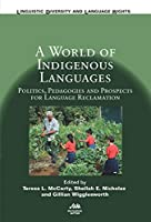 A World of Indigenous Languages: Politics, Pedagogies and Prospects for Language (Linguistic Diversity and Language Rights)