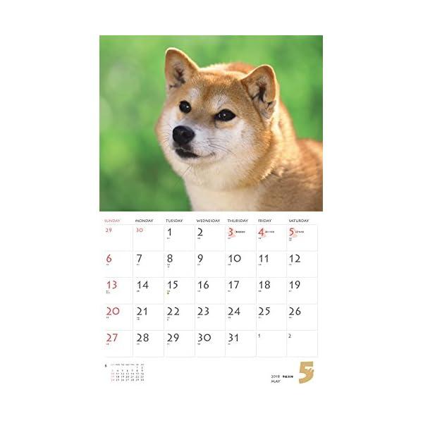 カレンダー2018 柴犬 (ヤマケイカレンダー...の紹介画像7