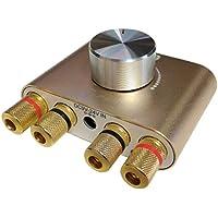Bluetooth 2チャンネル パワーアンプ 電源アダプタ付き ステレオ スピーカー HI-FI アンプ ゴールド