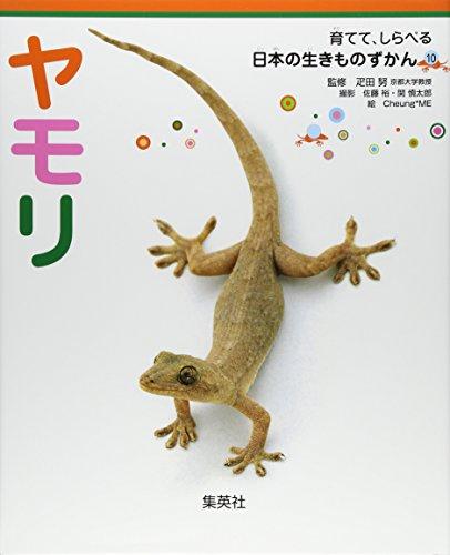ヤモリ 育てて、しらべる 日本の生きものずかん 10 (育てて、しらべる 日本の生きものずかん) (育てて、しらべる日本の生きものずかん)の詳細を見る