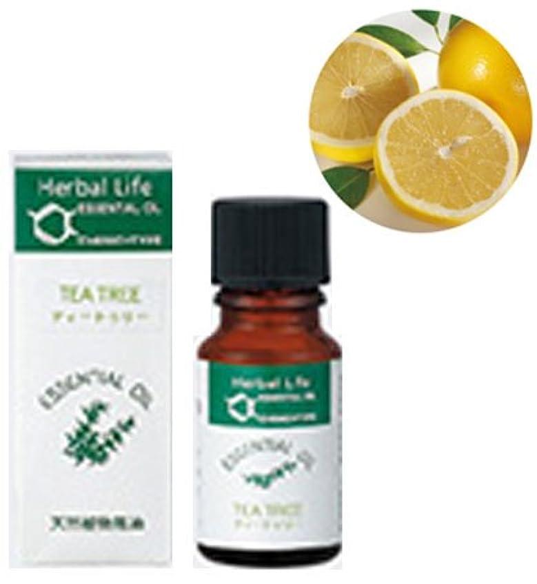 酸化するくま安定した生活の木 エッセンシャルオイル グレープフルーツ(フロクマリンフリー)(10ml)