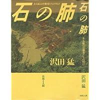 Amazon.co.jp: 沢田 猛: 本