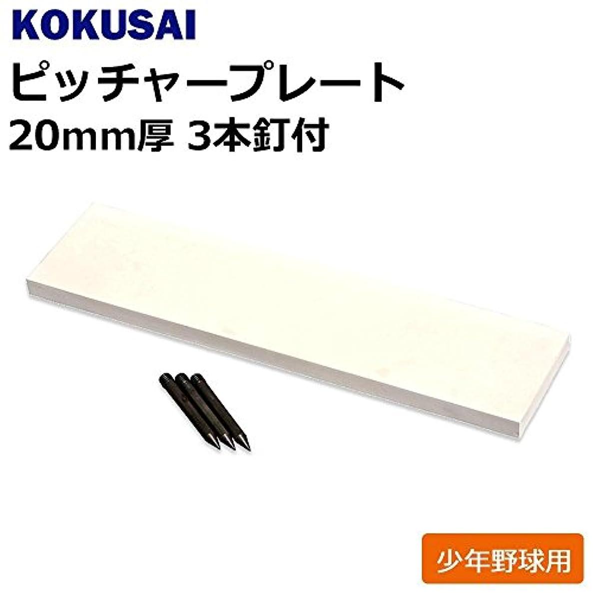公平申し立てるロバコクサイ KOKUSAI ピッチャープレート 少年野球用 20mm厚 3本釘付 1枚 RB530