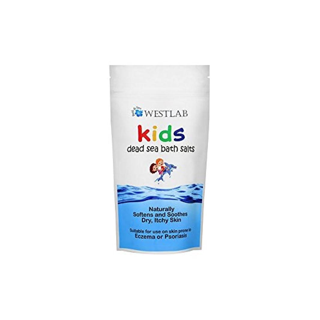 雲勝利した中級Westlab Kids Dead Sea Salt (Pack of 6) - 子供死海の塩 x6 [並行輸入品]