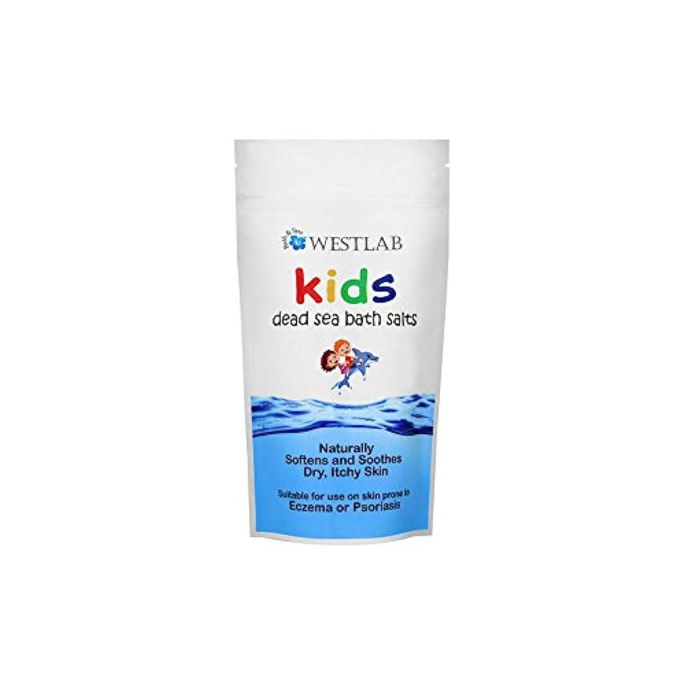 上記の頭と肩多くの危険がある状況スーツケース子供死海の塩 x2 - Westlab Kids Dead Sea Salt (Pack of 2) [並行輸入品]