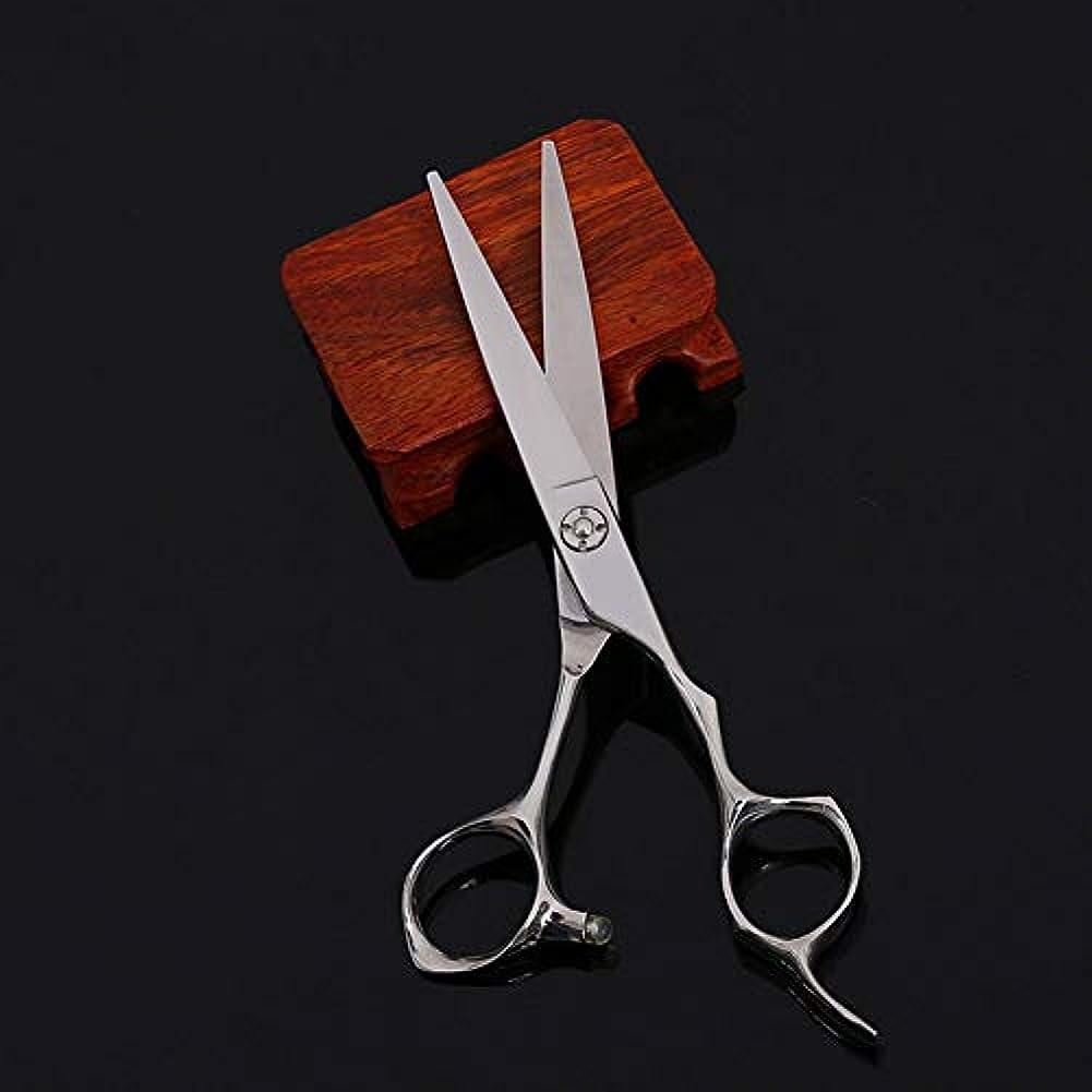 不名誉な急ぐ線形WASAIO バーバープロフェッショナルヘアカットプレーンのはさみヘアカットはさみ間伐歯を設定理髪テクスチャーサロンレイザーエッジシザーとホーム工具6インチ (色 : Silver)