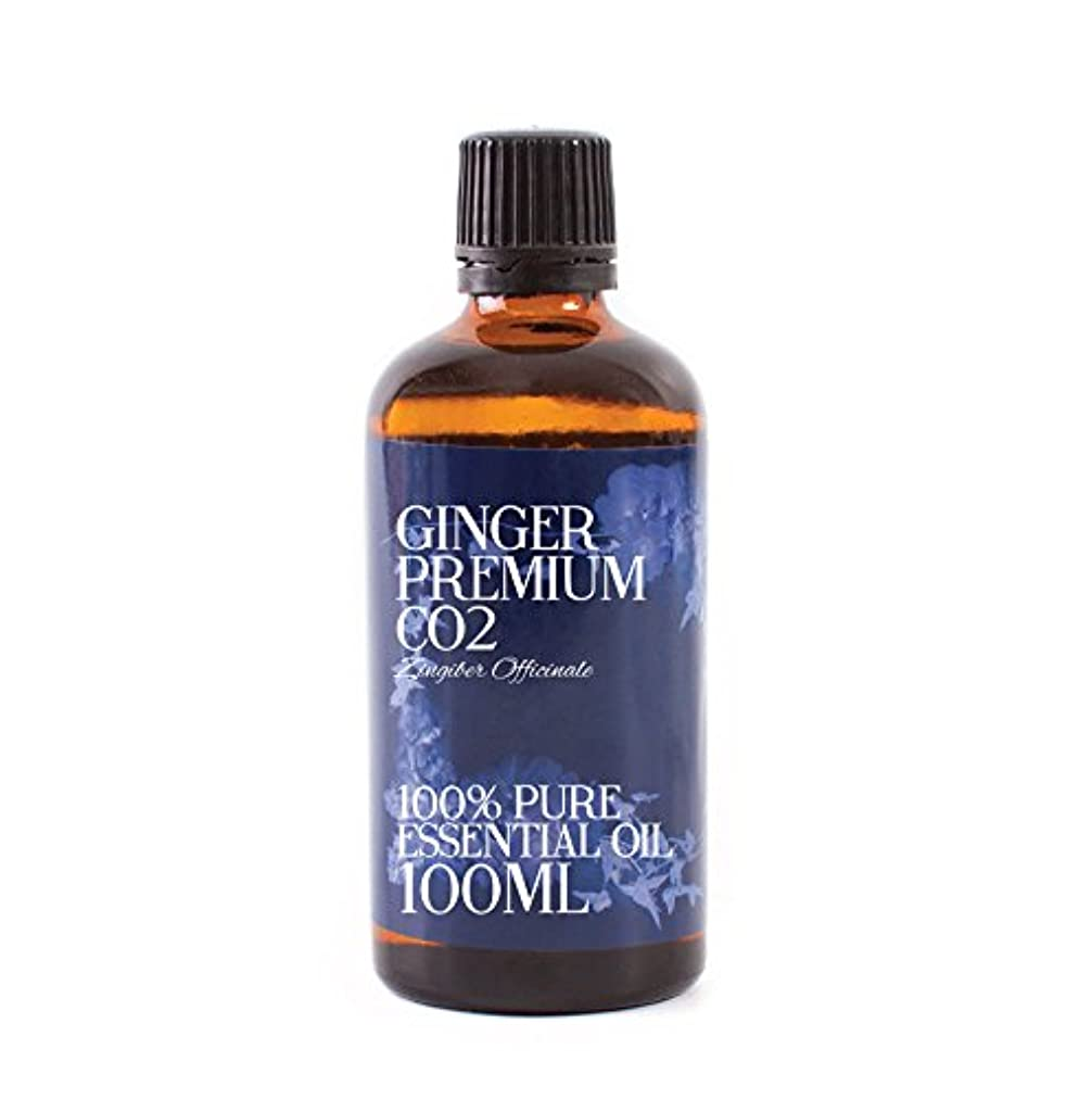弾力性のあるアンテナ嫌いMystic Moments | Ginger Premium CO2 Essential Oil - 100ml - 100% Pure