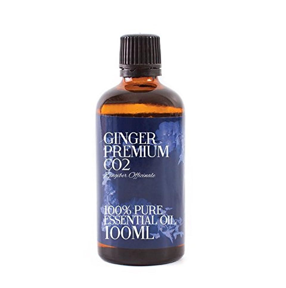 上記の頭と肩路面電車古代Mystic Moments | Ginger Premium CO2 Essential Oil - 100ml - 100% Pure