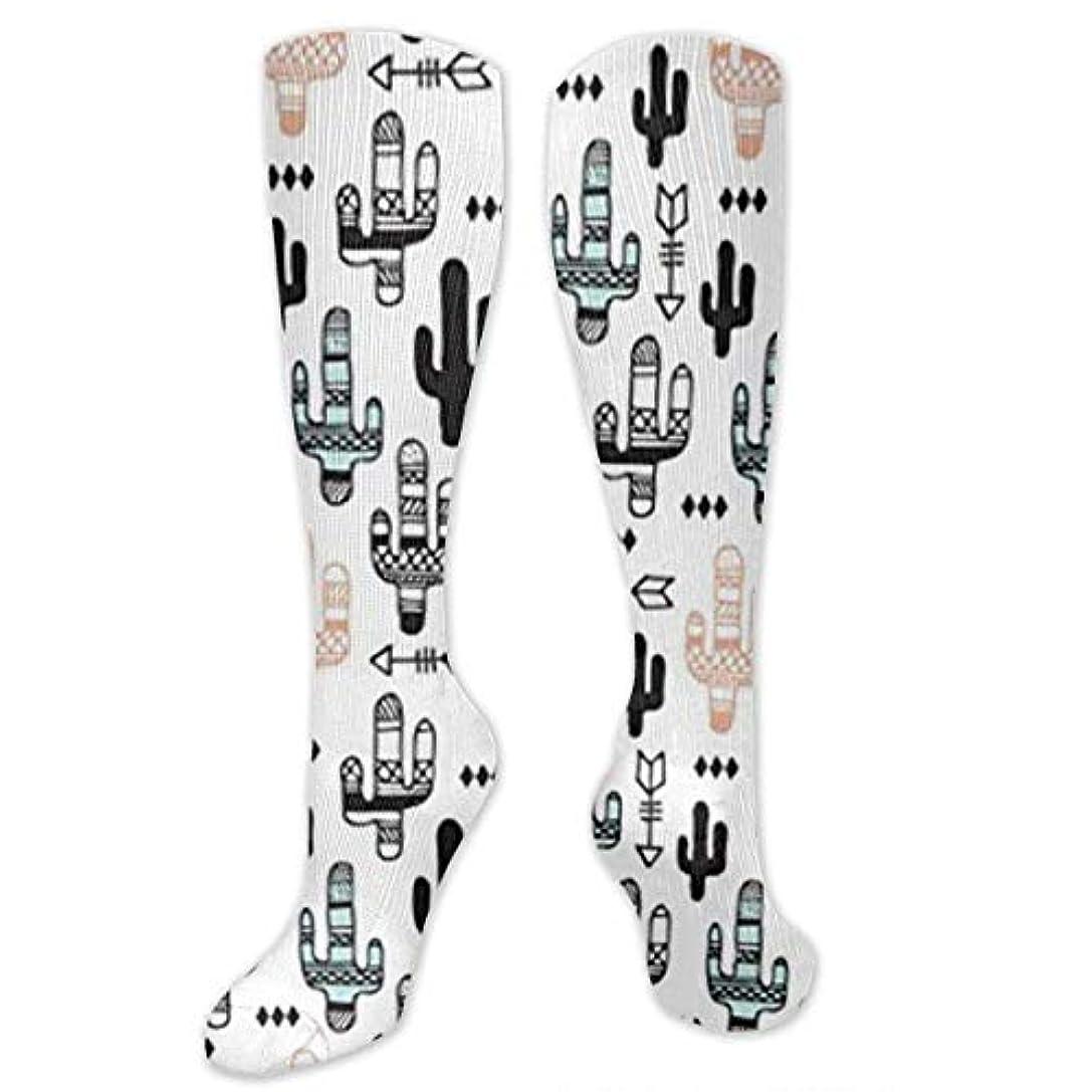 有望レッスン簡単に靴下,ストッキング,野生のジョーカー,実際,秋の本質,冬必須,サマーウェア&RBXAA Cactus Garden Summer Arrows Socks Women's Winter Cotton Long Tube...