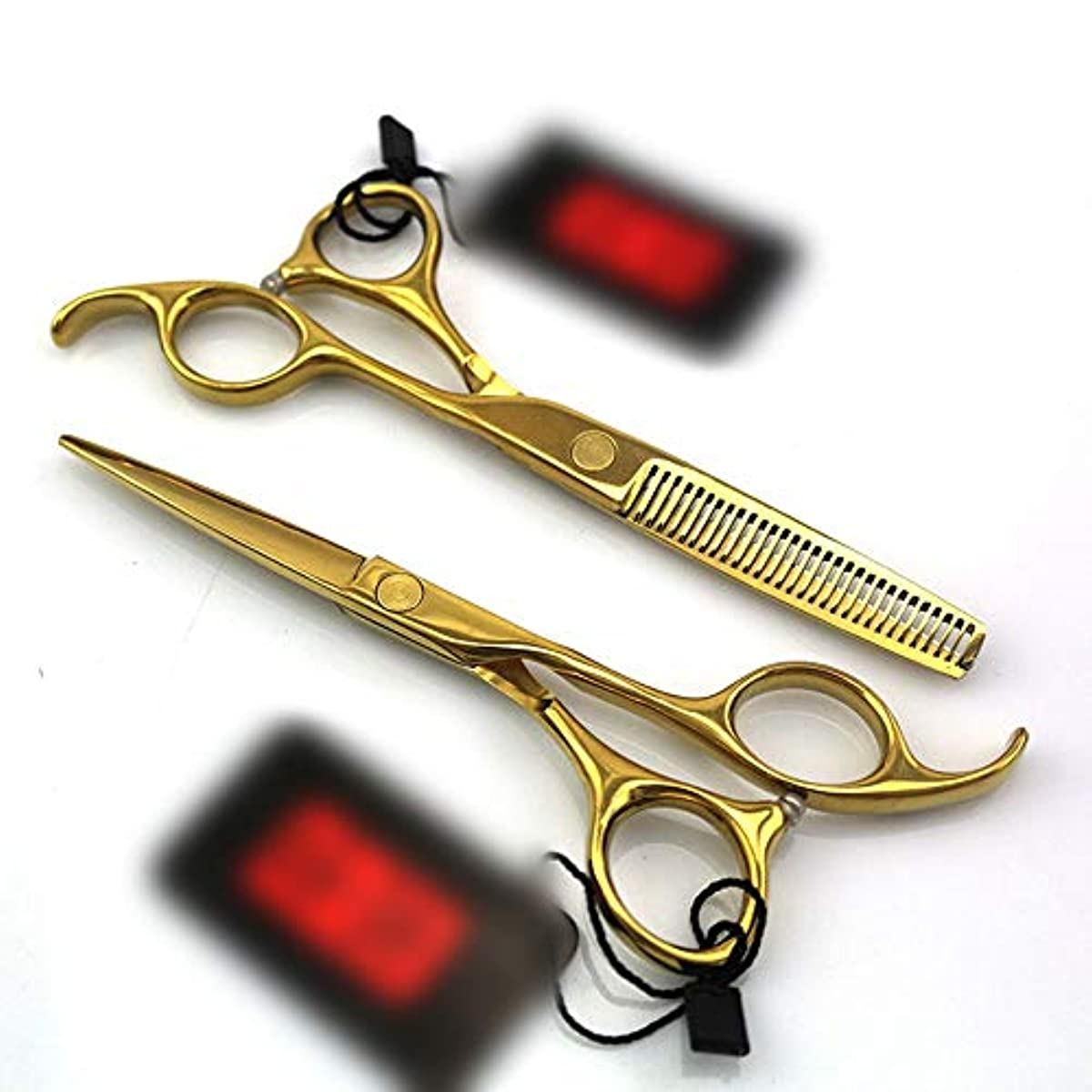 泣いているよろめく砂の5.5インチのまっすぐなハンドルの理髪師のめっきの金の専門の理髪セット ヘアケア (色 : ゴールド)