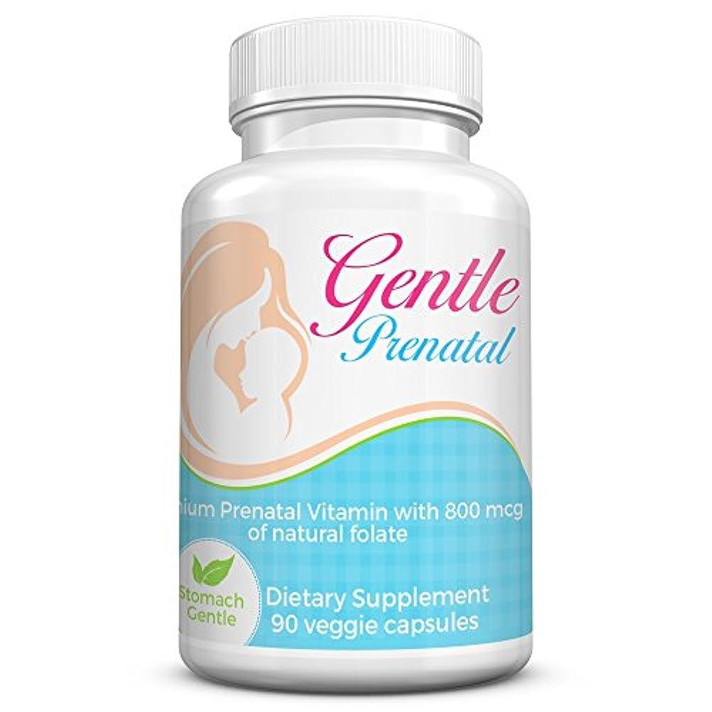 浸透する研磨びっくりするBasic Vigor 母性バランス穏やかな出生前ビタミン(90カプセル)