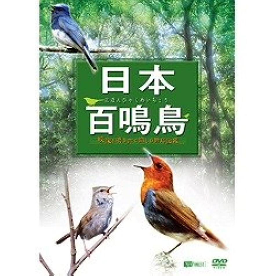脚牧草地マエストロシンフォレスト 日本百鳴鳥 映像と鳴き声で愉しむ野鳥図鑑 SDA84
