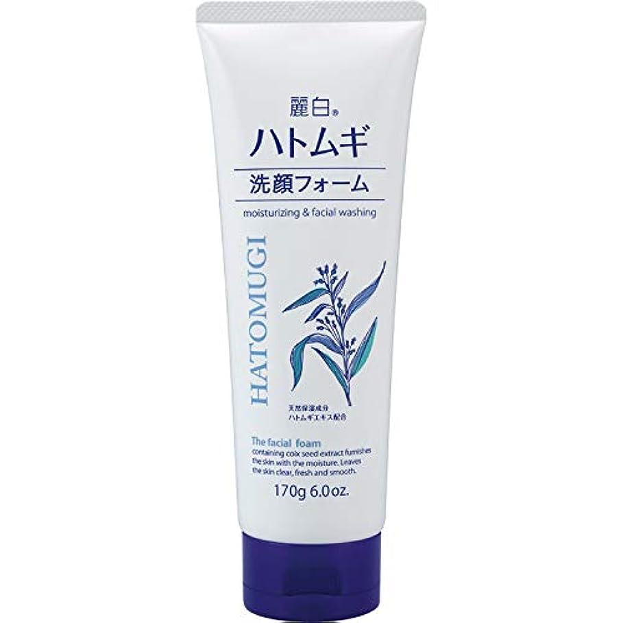 免疫分注するディスク麗白 ハトムギ 洗顔フォーム 170g