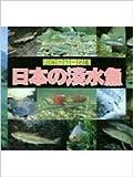 日本の淡水魚 (山渓カラー名鑑)