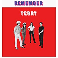 REMEMBER TERRY [LP] (180 GRAM) [Analog]
