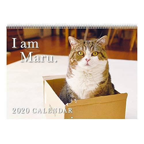 アートプリントジャパン 2020年 まるちゃんカレンダー vol.032 1000109241