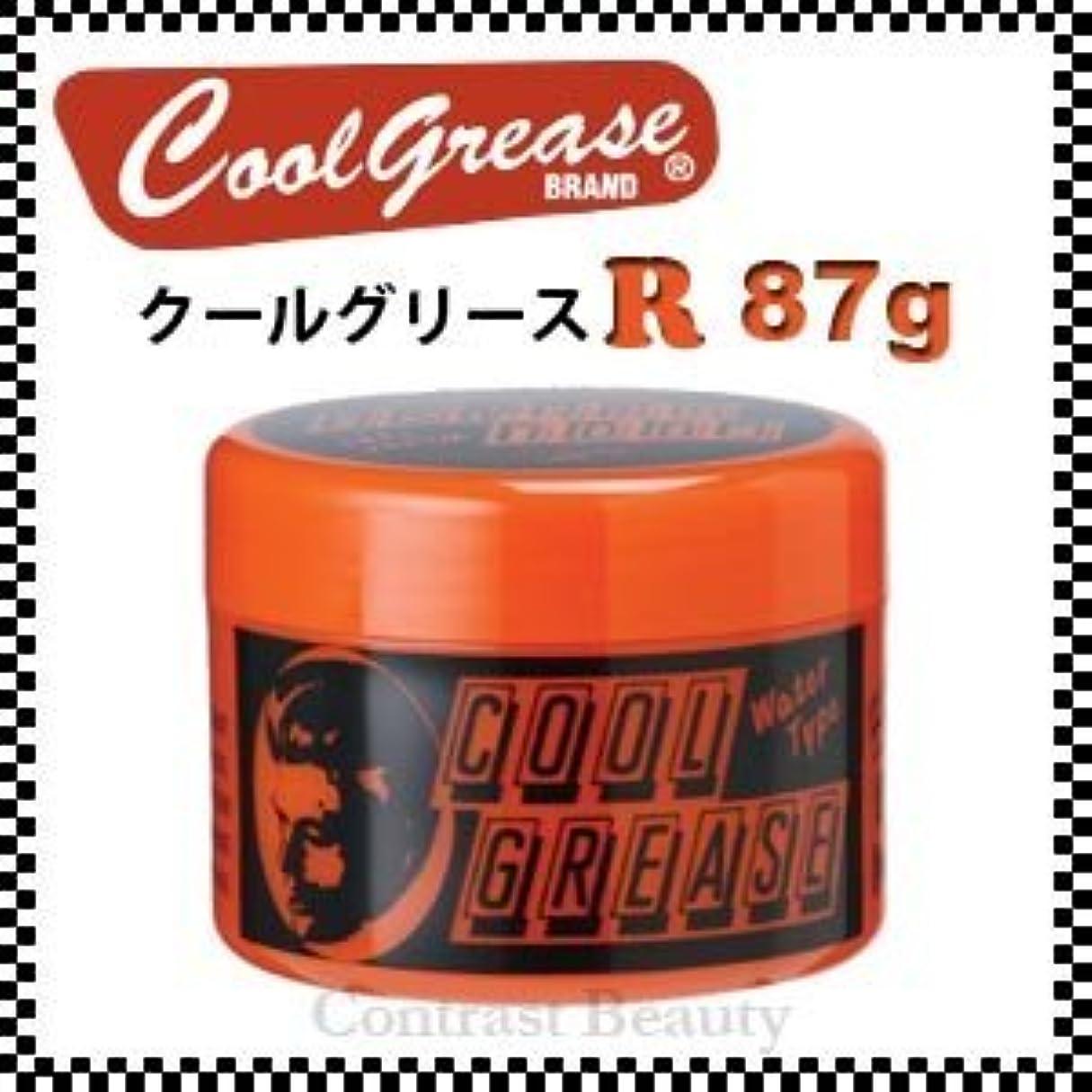 寛大なズームインする寛容な阪本高生堂 クールグリース R 87g