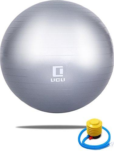 LICLI バランスボール 65cm 空気入れ ポンプ 付き アンチバースト ジムボール ヨガボール 耐荷重300kg 「 ダイエット エクササイズボール 」「 バランス 骨盤 姿勢矯正 」「 椅子としても使用可能 」 一年保証 4色 (シルバー)