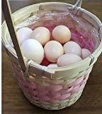 食用 烏骨鶏の卵 6個入り