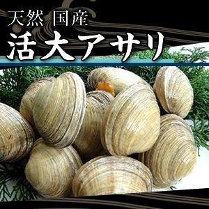 活大アサリ 1kg(6個~8個)