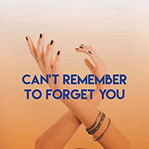 Can't Remember to Forget You