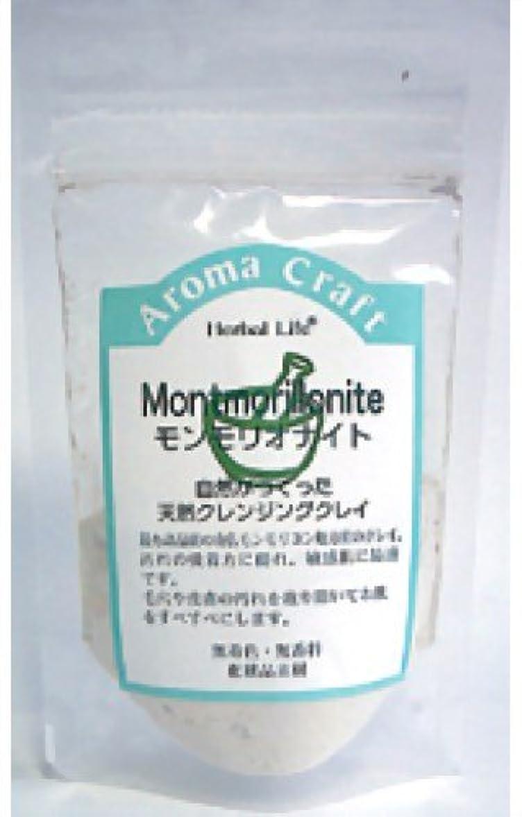敬意欠乏マート生活の木 AC モンモリオナイト 30g