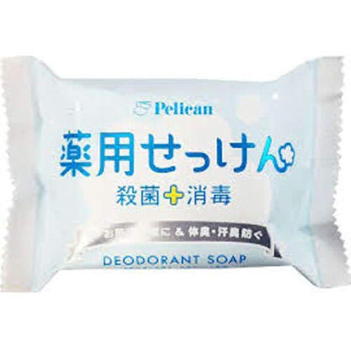 【ハンズメッセ2019】ペリカン石鹸 薬用せっけん 85g<お届けまで約1?2週間>