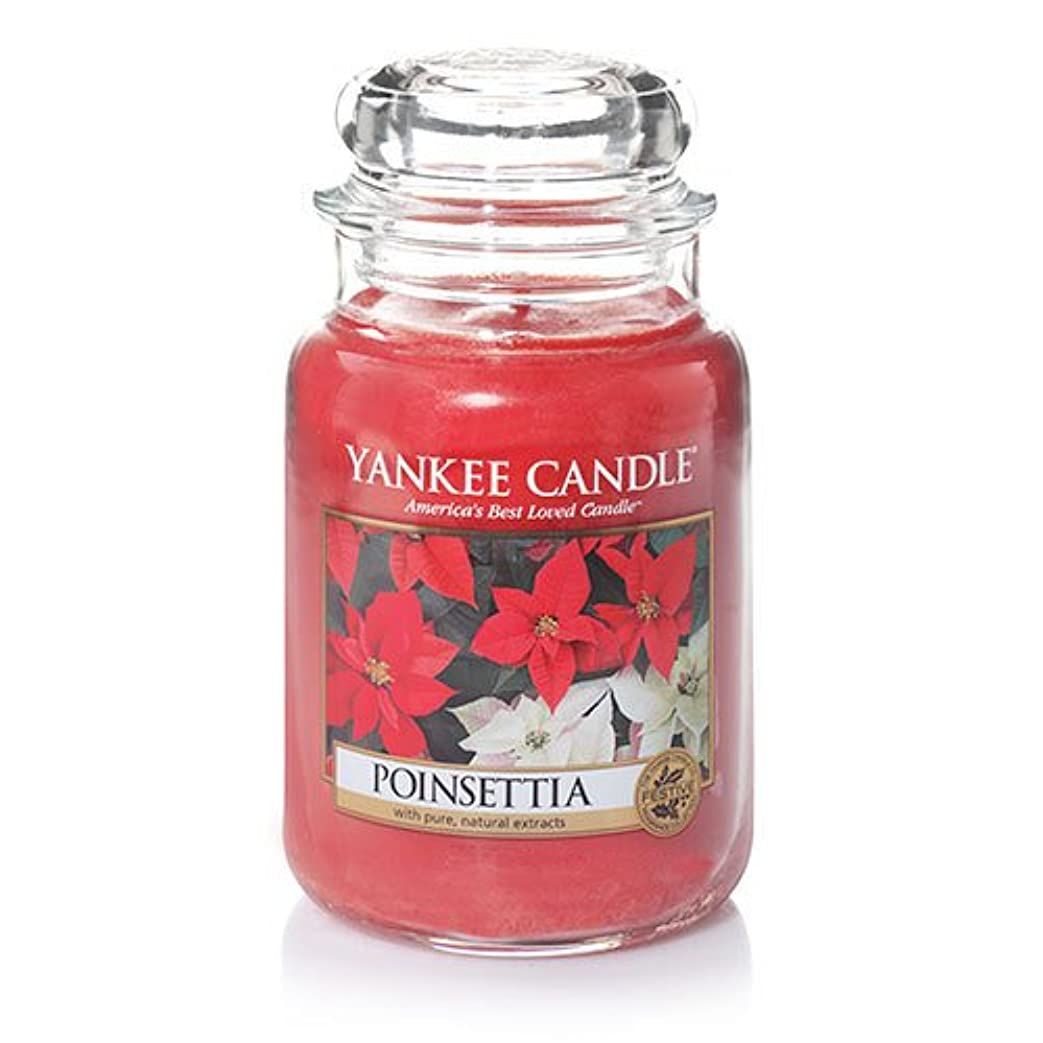 ビルマ好戦的なハイライトYankeeキャンドルポインセチアLarge Jar Candle、新鮮な香り