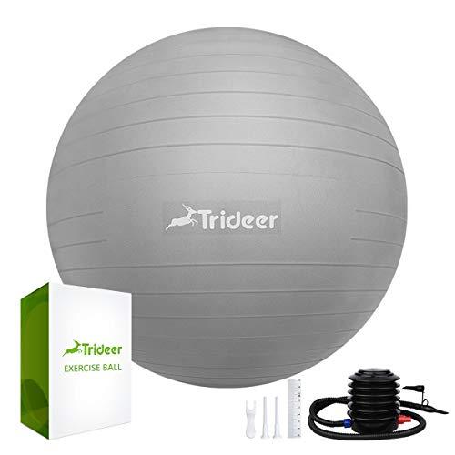 Trideer バランスボール 55 65 75 cm (シルバー, 55 cm)