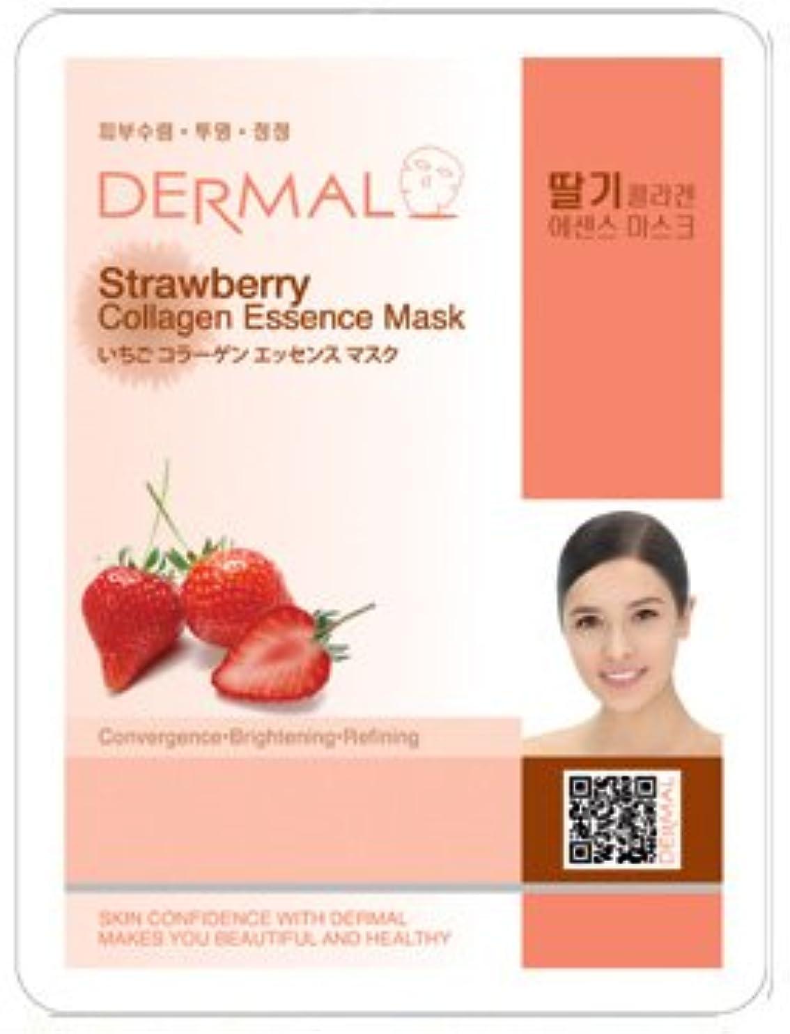 シンプルな遵守するページシート マスク イチゴ ダーマル Dermal 23g (10枚セット) フェイス パック