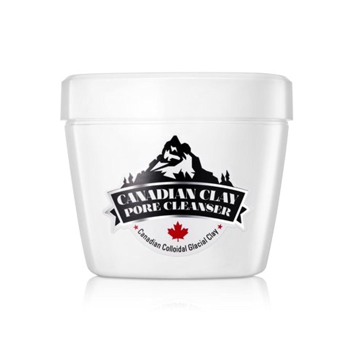 ハブアクションファイルNEOGEN DERMALOGY Canadian Glacial Clay Pore Cleansing Foam 120g / ネオゲンダーマロジーカナダ氷河粘土細孔清浄フォーム120g / NEOGEN DERMALOGY...