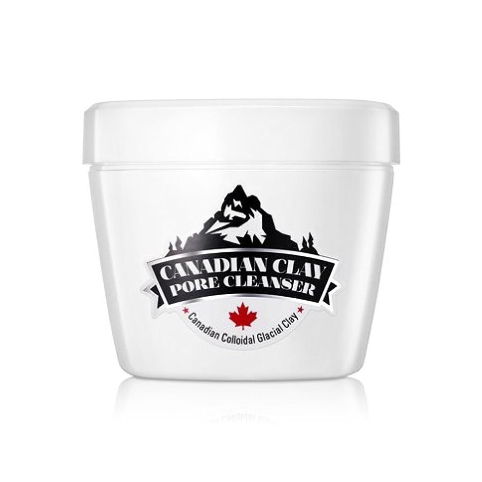 酔ったワンダー祖母NEOGEN DERMALOGY Canadian Glacial Clay Pore Cleansing Foam 120g / ネオゲンダーマロジーカナダ氷河粘土細孔清浄フォーム120g / NEOGEN DERMALOGY...