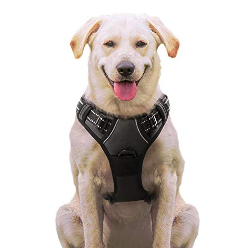 ハーネス 犬 中型犬 8-23KG 用 歩行補助 犬用 はーねす 引っ張り防止 散歩 しつけ用 サイズ調節可 蛍光 安...