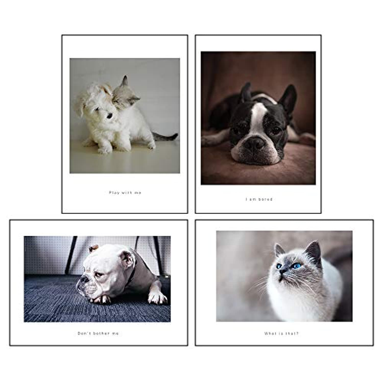 サンサンフー ポスター A3 動物 犬 猫 インテリア アート 4枚セット PGS07A30000