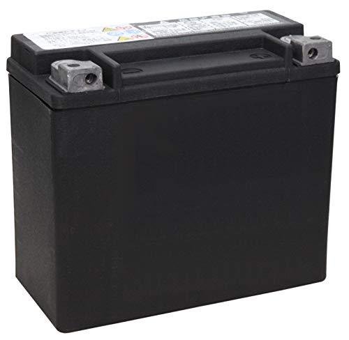 ハーレーダビッドソン [ HARLEY DAVIDSON ] シールド型 バイク用バッテリー [ 液入充電済 ] HD66000207
