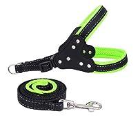 ファッションラインストーンペット犬の安全子犬胸ストラップハーネスひも牽引ロープ YANW (色 : 緑, サイズ さいず : L l)