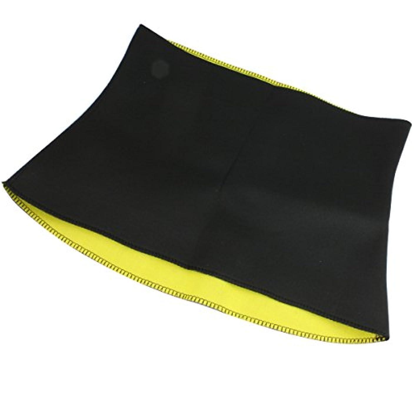 オーディション感心する不完全バリ汗スリム腹巻き 力強い着圧でインナーマッスルをトレーニング サウナ機能 Lサイズ(S1M2L3)