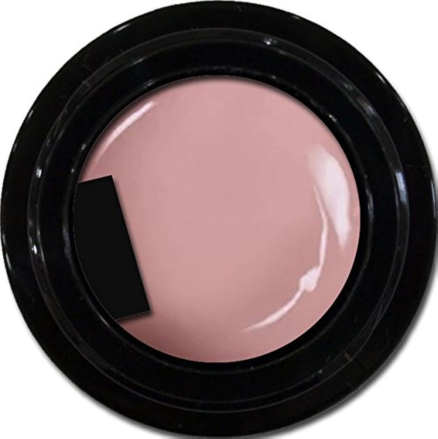 シーン葡萄規制カラージェル enchant color gel M506 SmokePink 3g/ マットカラージェル M506スモークピンク 3グラム