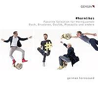 #hornlikes - Werke Fur Horn