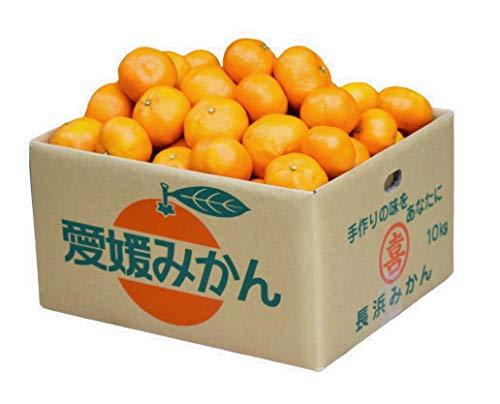 愛媛 みかん 訳あり 甘い 温州 蜜柑 家庭用 愛媛県 産地直送 柑橘 規格外 箱入り