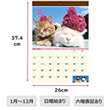 学研ステイフル かご猫 2019年 カレンダー 壁掛け BM12094 画像