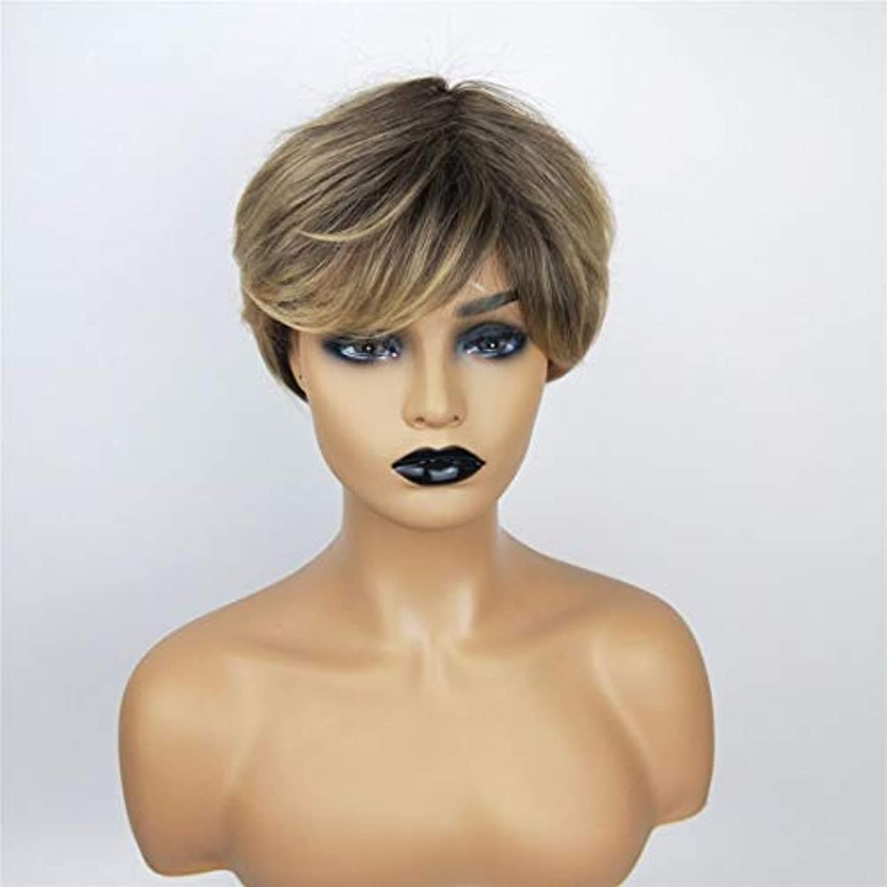 ボットびっくりしたドナーKerwinner 女性のための茶色のかつら短い巻き毛のかつら合成完全女性のかつら