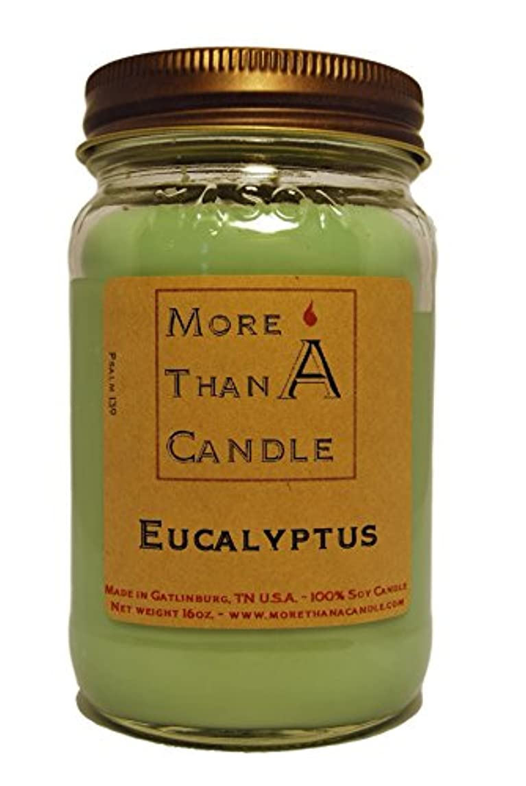 文字通り哺乳類含意More Than A Candle ELP16M 16 oz Mason Jar Soy Candle, Eucalyptus