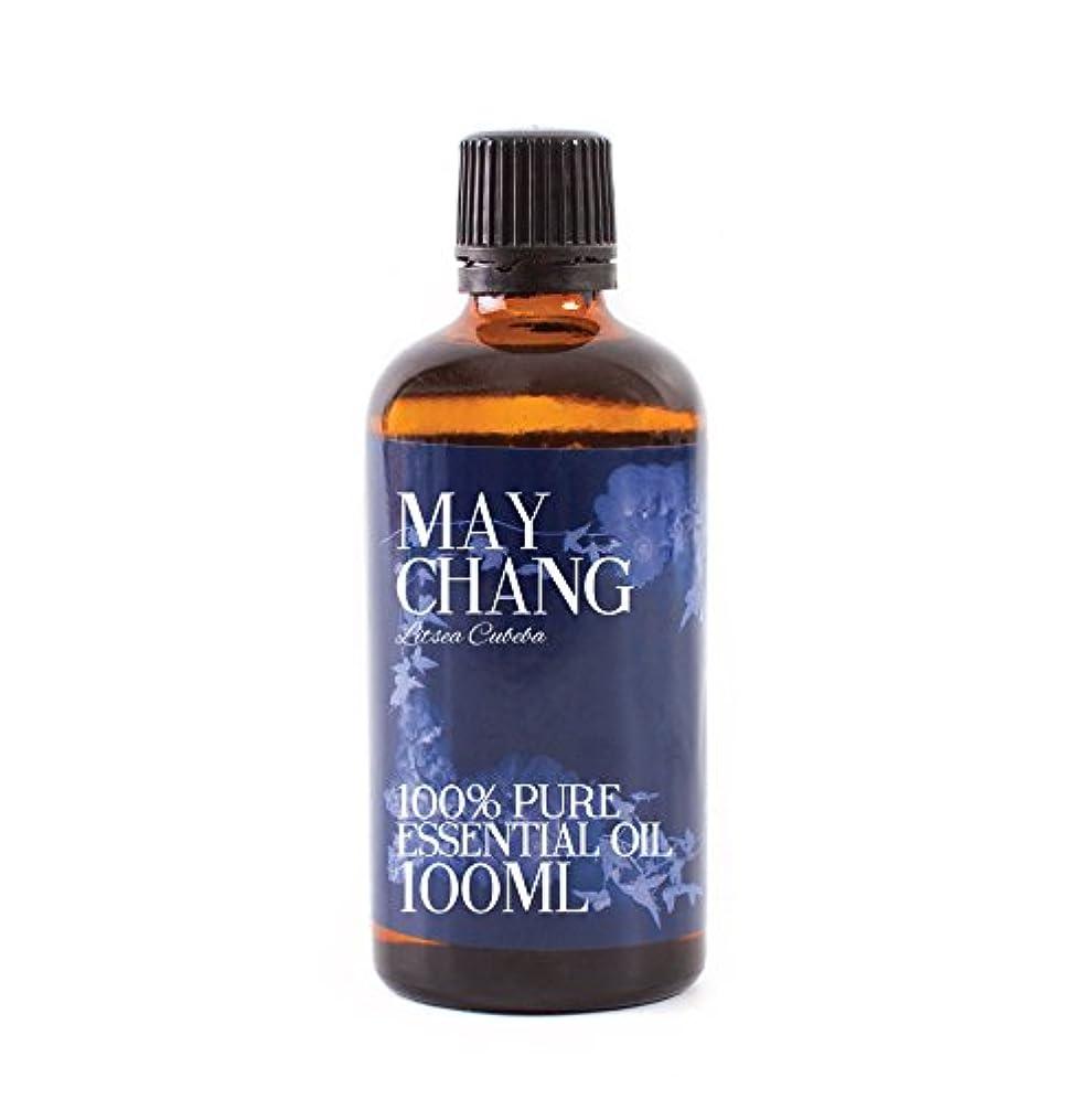 マラウイ口頭岩Mystic Moments   Litsea Cubeba Essential Oil - 100ml - 100% Pure