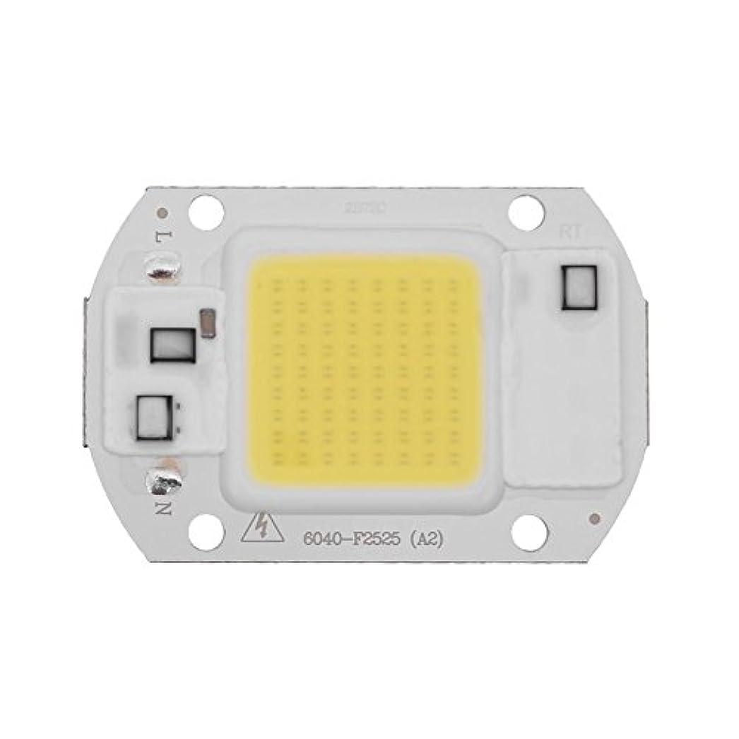 ドア誰か牧師K-outdoor LED作業灯 ライトバー LEDワークライト20W 220V DIY トラック用品 サーチライト ワークライト 車外灯 汎用作業灯 集魚灯 前照灯