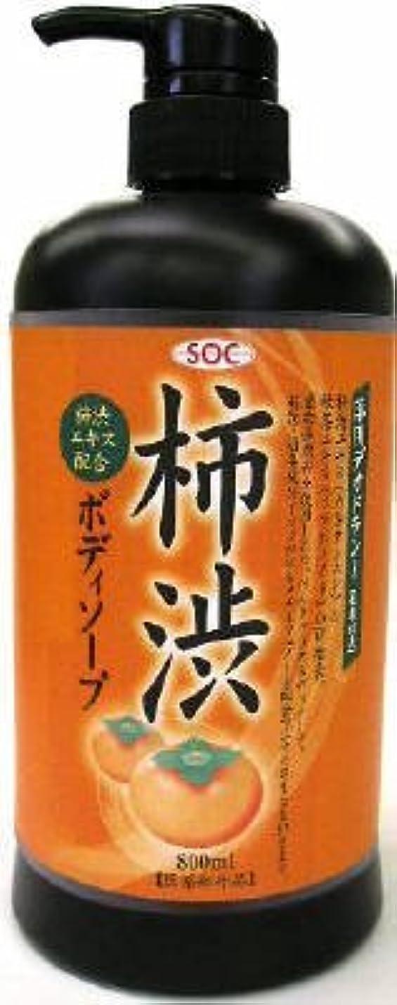 わな忘れる訴える渋谷油脂 SOC 薬用柿渋ボディソープ 本体 800ml お肌にマイルドなせっけんタイプのボディソープ フルーティーフローラルのさわやかな香り×12点セット (4974297276010)